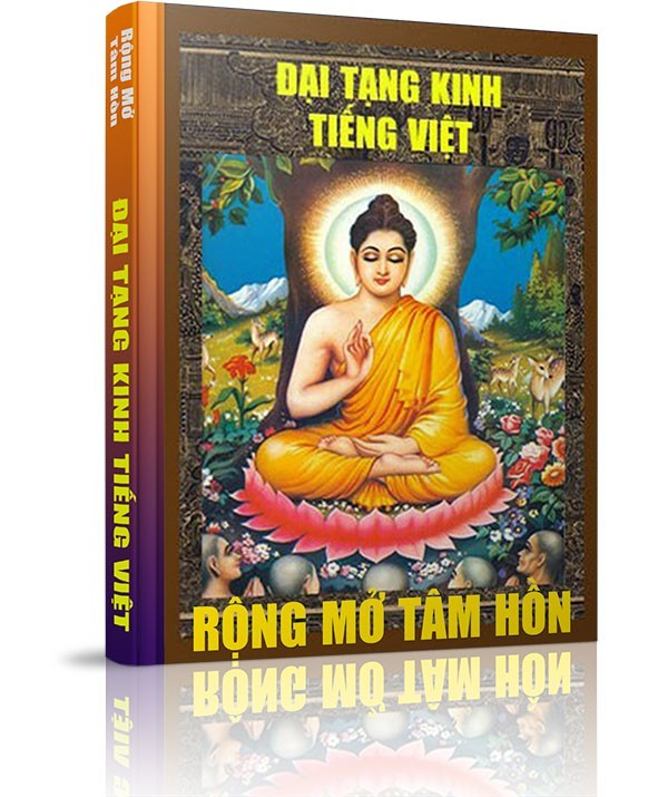 Những vấn đề liên quan đến Đại Tạng Kinh - Công trình của Tuệ Quang Foundation