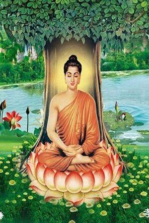 Phật Lý Cơ Bản - Phật Lý Cơ Bản