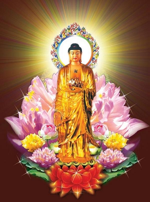 Bài viết, tiểu luận, truyện ngắn - Lược sử Đức Phật A-di-đà và 48 đại nguyện