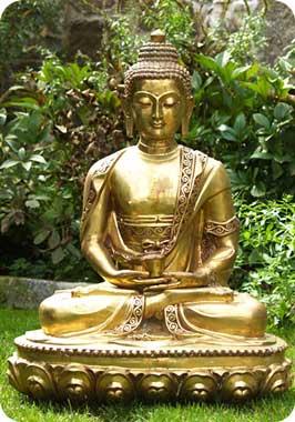 Sử Dụng Thất Giác Chi (Thất Bồ Đề Phần) Trong Công Phu Môn Niệm Phật - Mùa xuân theo dấu chân Phật
