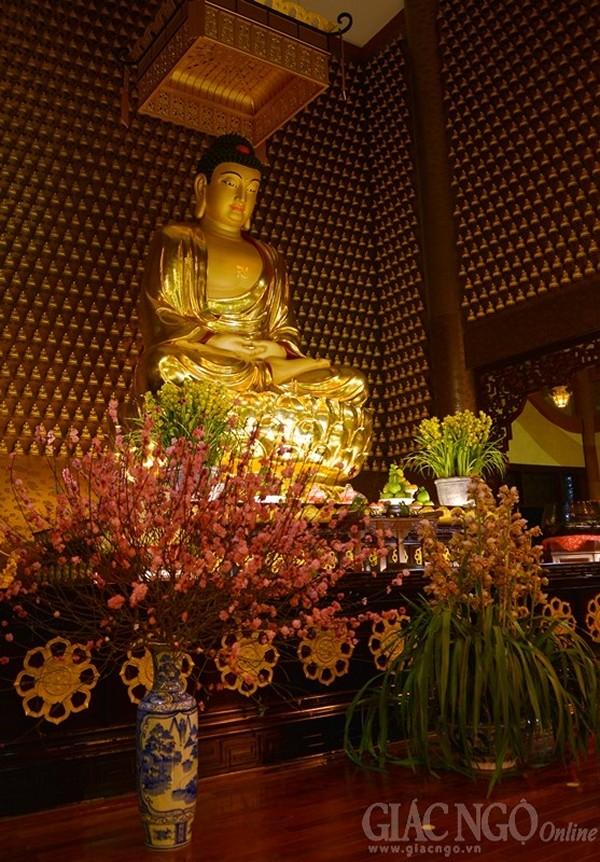 Sử Dụng Thất Giác Chi (Thất Bồ Đề Phần) Trong Công Phu Môn Niệm Phật - Đức tin của người Phật tử