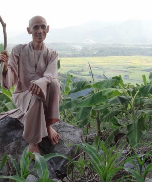Bài viết, tiểu luận, truyện ngắn - Giấc mơ Trường Sơn