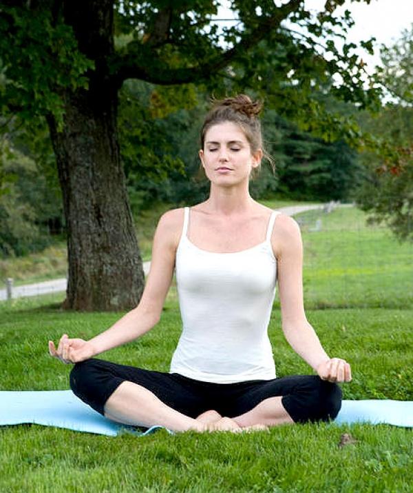 Sử Dụng Thất Giác Chi (Thất Bồ Đề Phần) Trong Công Phu Môn Niệm Phật - Thiền tập và nhan sắc