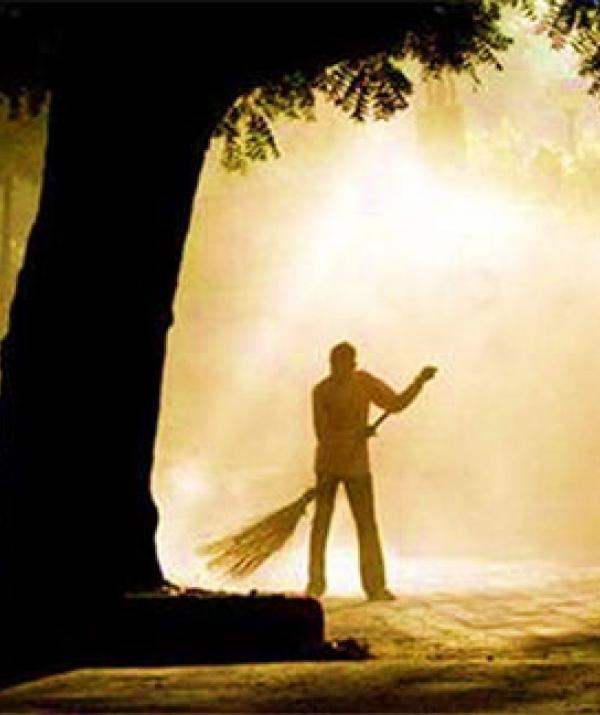 Bài viết, tiểu luận, truyện ngắn - Quý bà sang trọng và ông lão quét rác