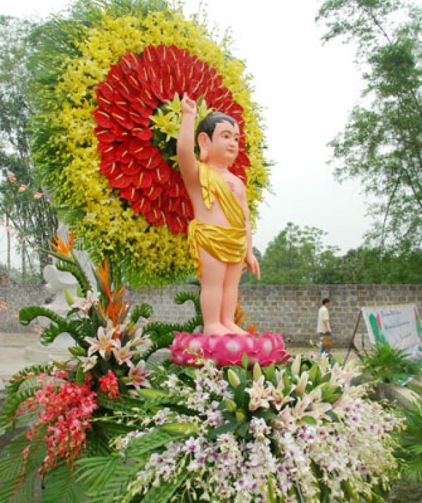 Tu học Phật pháp - Vui thay Phật ra đời