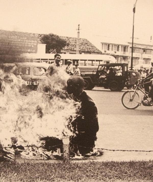 Sử Dụng Thất Giác Chi (Thất Bồ Đề Phần) Trong Công Phu Môn Niệm Phật - Trái tim bất diệt