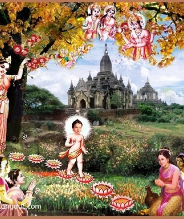 Bài viết, tiểu luận, truyện ngắn - Trước Phật nhìn lại cõi người