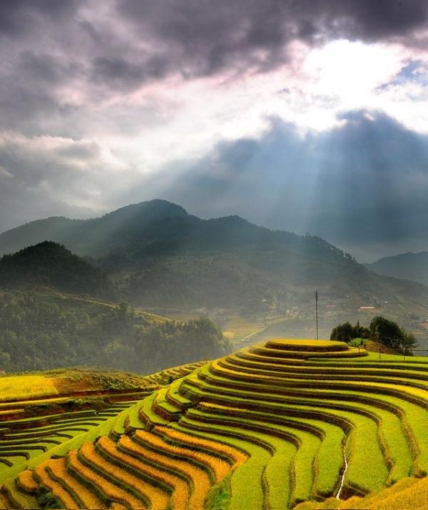 Bài viết, tiểu luận, truyện ngắn - Ký sự: Nở Hoa Vùng Tây Bắc - Phần 3