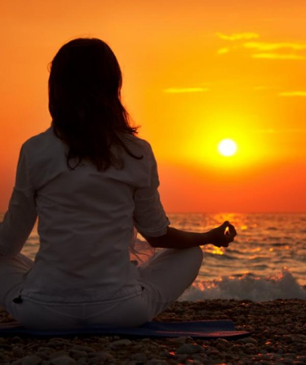 Sử Dụng Thất Giác Chi (Thất Bồ Đề Phần) Trong Công Phu Môn Niệm Phật - Giới thiệu Thiền Vipassana cho người Việt tại California
