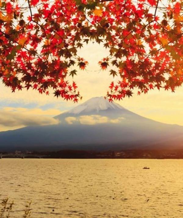 Bài viết, tiểu luận, truyện ngắn - Nhật ký hành hương Nhật Bản
