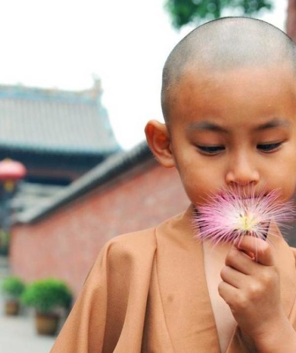 Bài viết, tiểu luận, truyện ngắn - Mạn đàm quanh triết lý giáo dục của Phật giáo