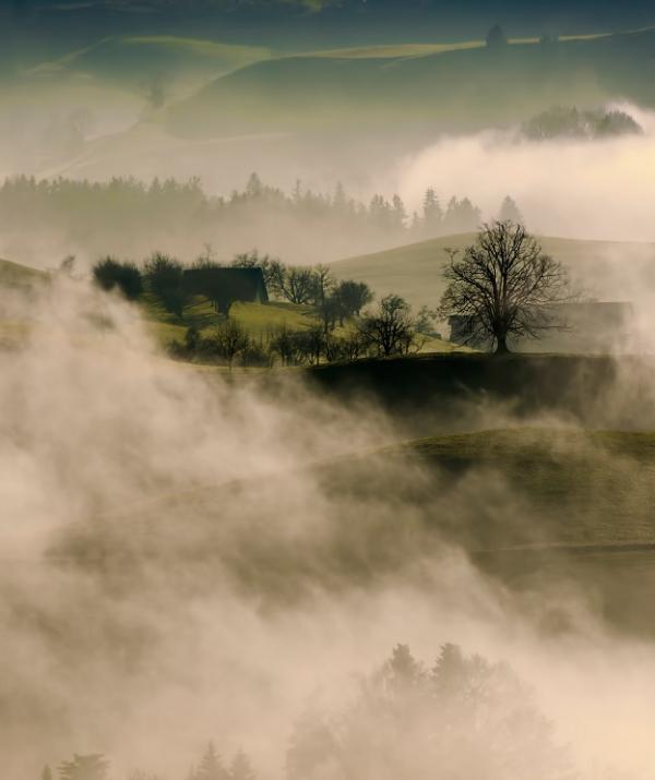 Bài viết, tiểu luận, truyện ngắn - Dội trong sương mù