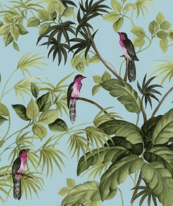 Bài viết, tiểu luận, truyện ngắn - Chim thuyết pháp