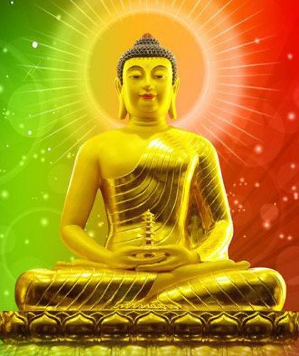 Sử Dụng Thất Giác Chi (Thất Bồ Đề Phần) Trong Công Phu Môn Niệm Phật - Nhìn tới năm 2019