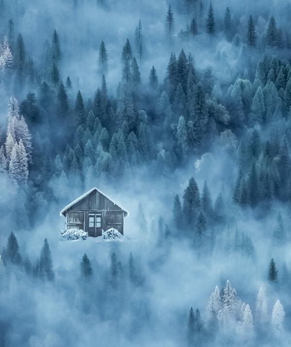 Bài viết, tiểu luận, truyện ngắn - Trí nhớ mù sương