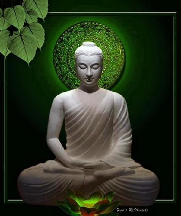 Bài viết, tiểu luận, truyện ngắn - Cuộc hành trình cuối cùng của Đức Phật với những thống khổ muôn đời của nhân loại
