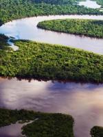 Khúc gỗ trôi sông