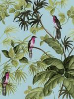 Chim thuyết pháp