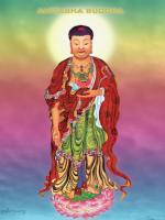Quang Thọ Vô Lượng của Phật A Di Đà