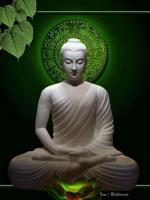 Cuộc hành trình cuối cùng của Đức Phật với những thống khổ muôn đời của nhân loại
